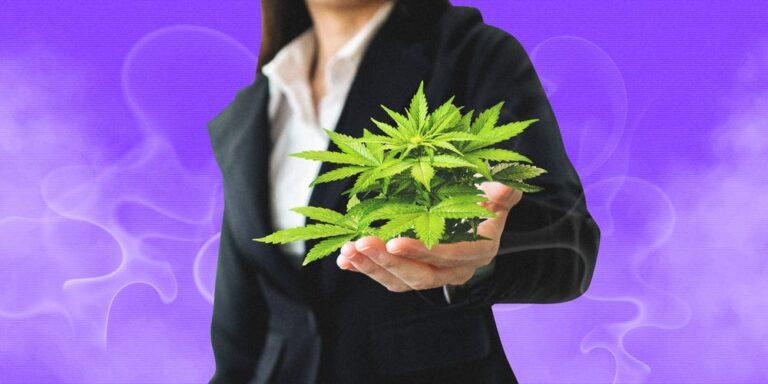 26 hottest cannabis
